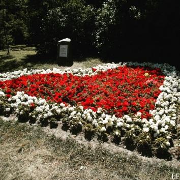 Garden of Festetics Palace
