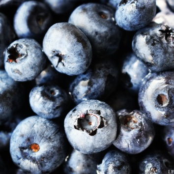 Blueberries from the market - Szeged